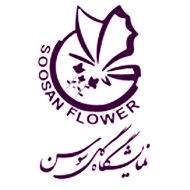 گل سوسن مشهد