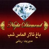باغ تالار الماس شب مشهد