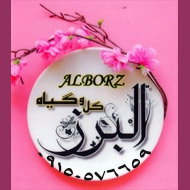 گل و گیاه البرز در مشهد