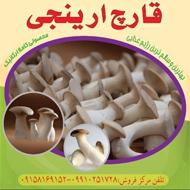 تولید و فروش قارچ خوراکی دارویی ارینجی شاه صدف در مشهد