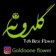 گل گلدونه مشهد